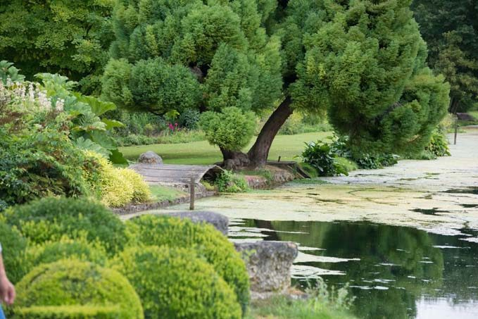 Le jardin du Plessis Sasnières © Laurence Mary